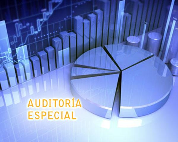 Auditorías especiales | Afines S.A.S.